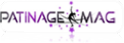 Vign_logo_patinage_mag